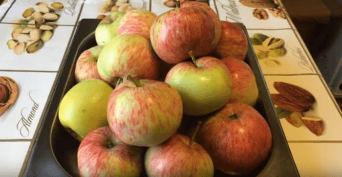 Выбираем любые сорта яблок